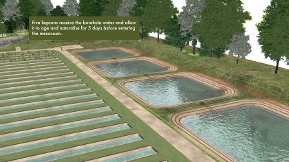 Still Frame from Mesocosm animation showing the lagoons